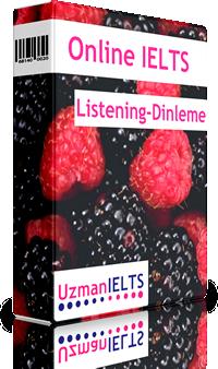 IELTS Listening Çalışmaları